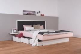 Wasserbett mit Schubkästen + Nachttischablage + Wandpaneel Duetto V