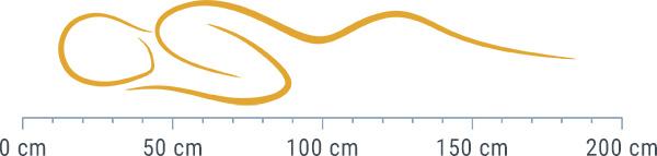 Die richtige Wasserbett Größe